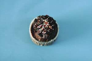 Photo of a chocolate cupcake with sprinkles.
