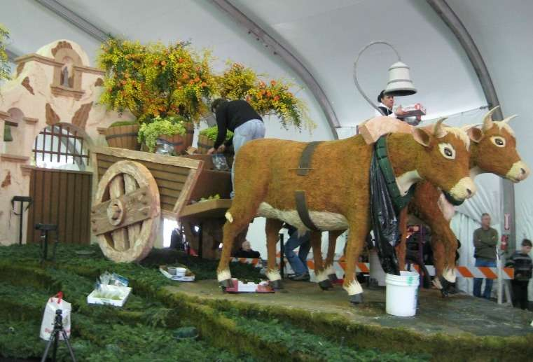 Tournament of Roses Parade – decorating with tea leaves or ti leaves?
