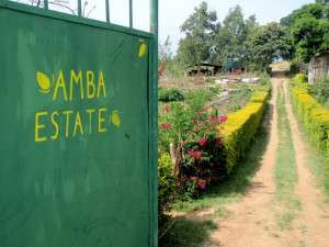 Welcome to Amba Estate, Sri Lanka