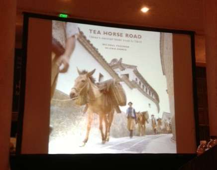 A serendipitous journey to the Ancient Tea Horse Road