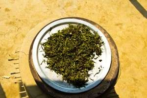 dried leaves rajiv may