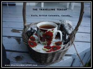 The travelling teacup