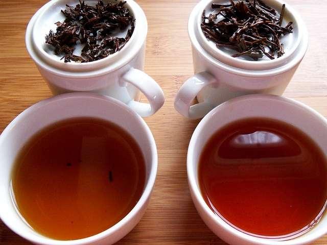 Tea 101: Which Tea Should I Drink?