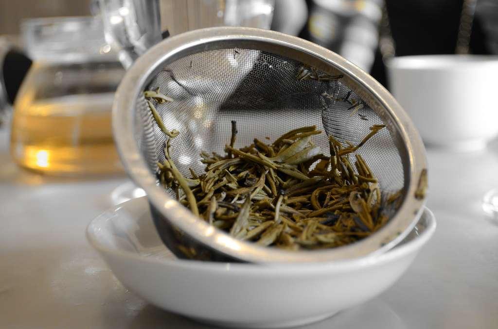 Savoring lotus tea in Vietnam