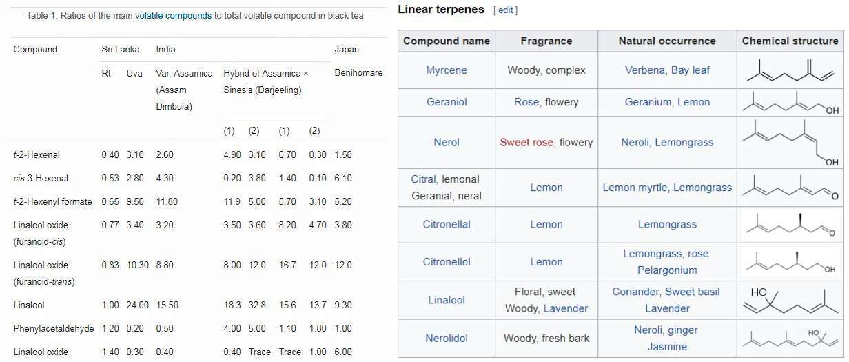 "Tea Taste Profiling and Machine Testing ""Tasting"" – Part 2"