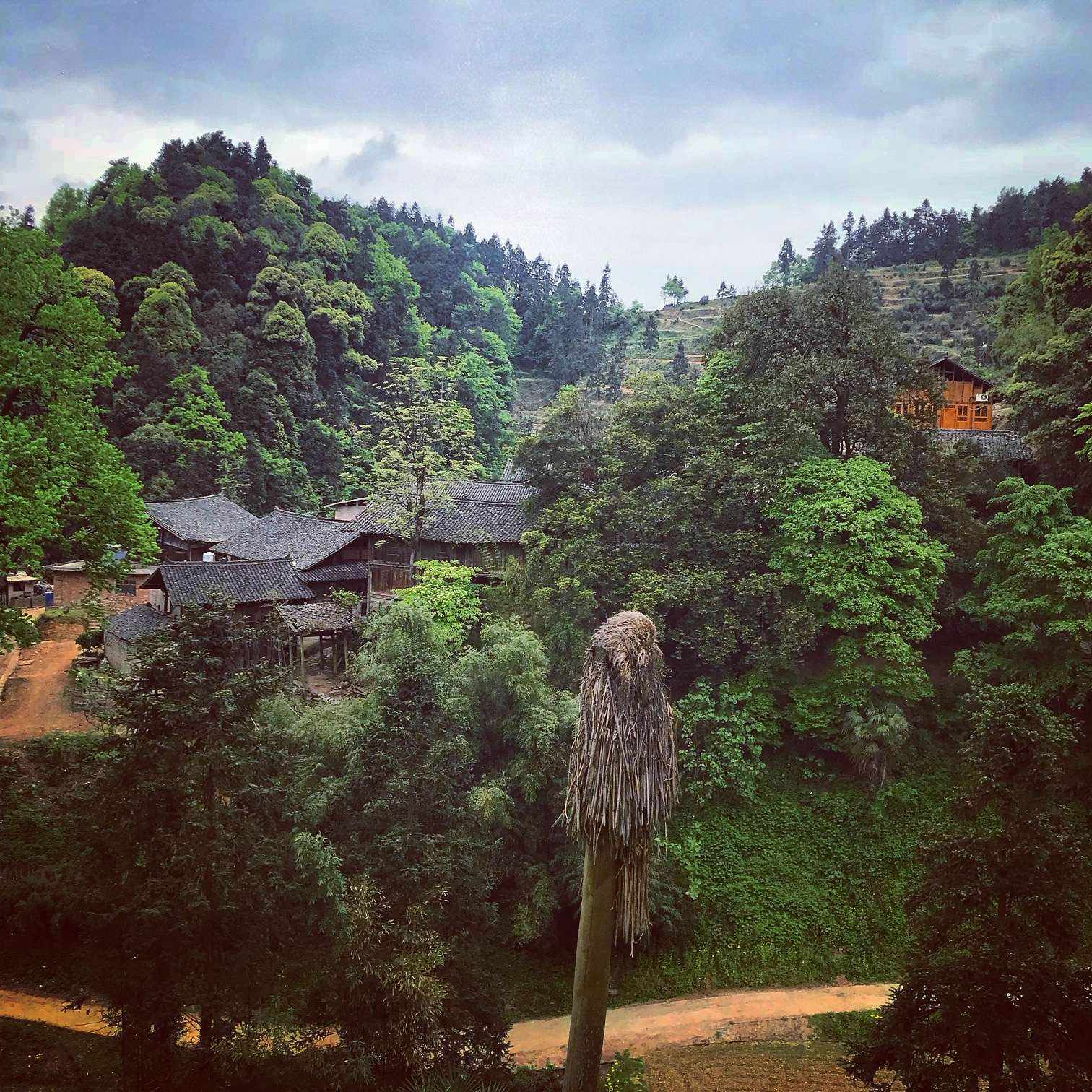 Precious State: The Unusual and Obscure Teas of Guizhou  – Part 1