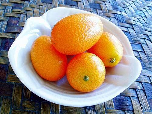 Tea and Kumquats, Anyone?