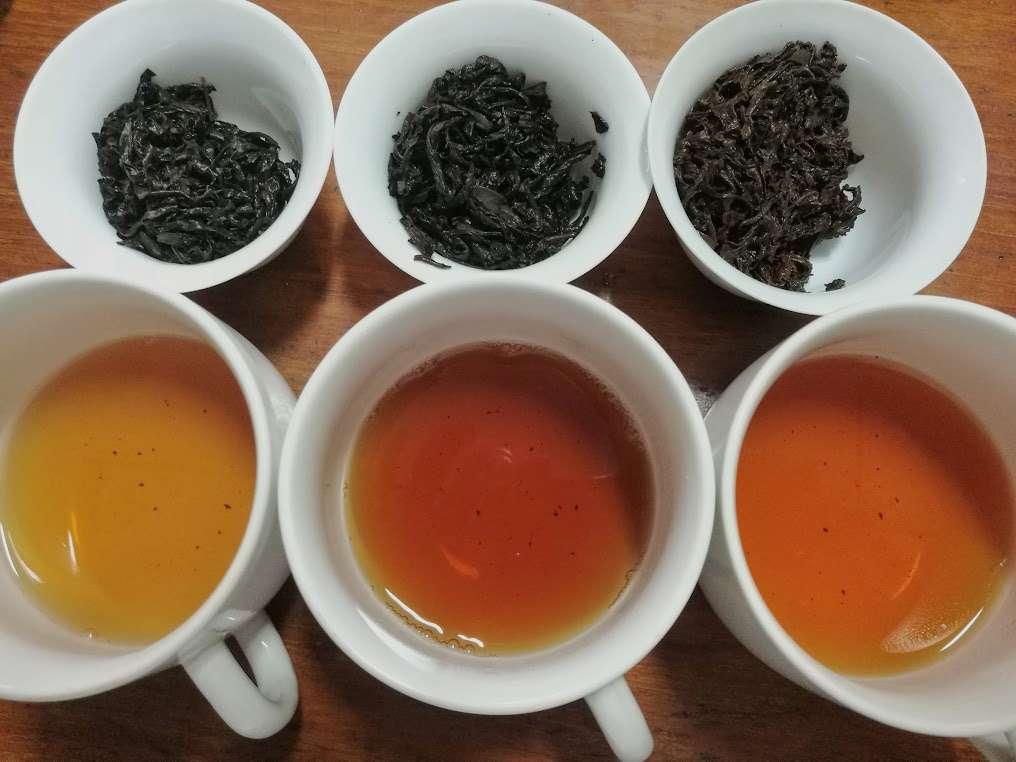 Combined Tea Sample Tasting – Part 1