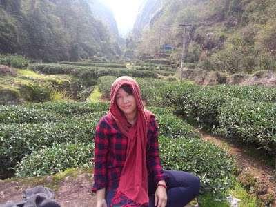 Tea Blogging Retrospective; Four Busy Years – Part 1