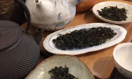 Wild Organic Tea From Shikoku – Part 2