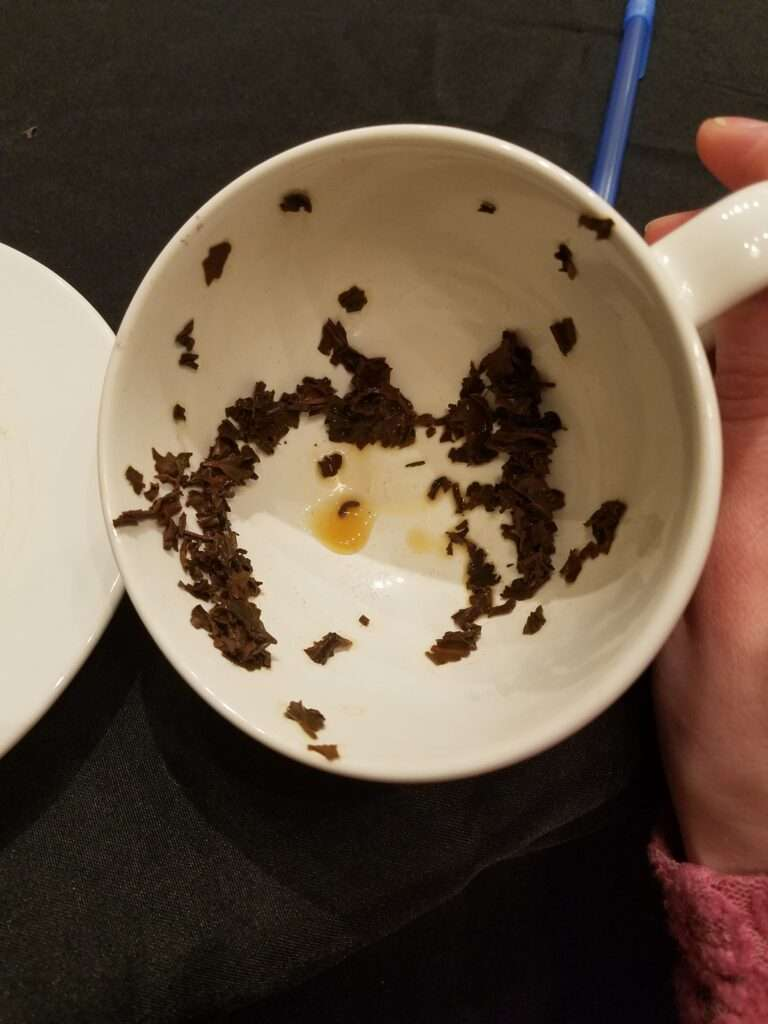 Teacup with tea leaves in the bottom roughly forming a shape
