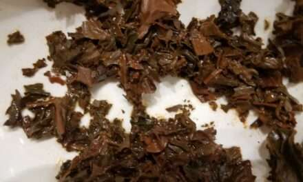 My Introduction to Tea Leaf Reading – Part 1