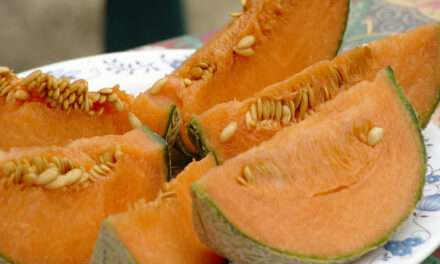 Celebrating the Season With Fragrant Melon and Tea