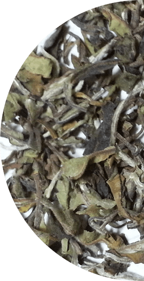 Photo of some loose Rohini Exotic Emperor White tea, fragrant and beautiful