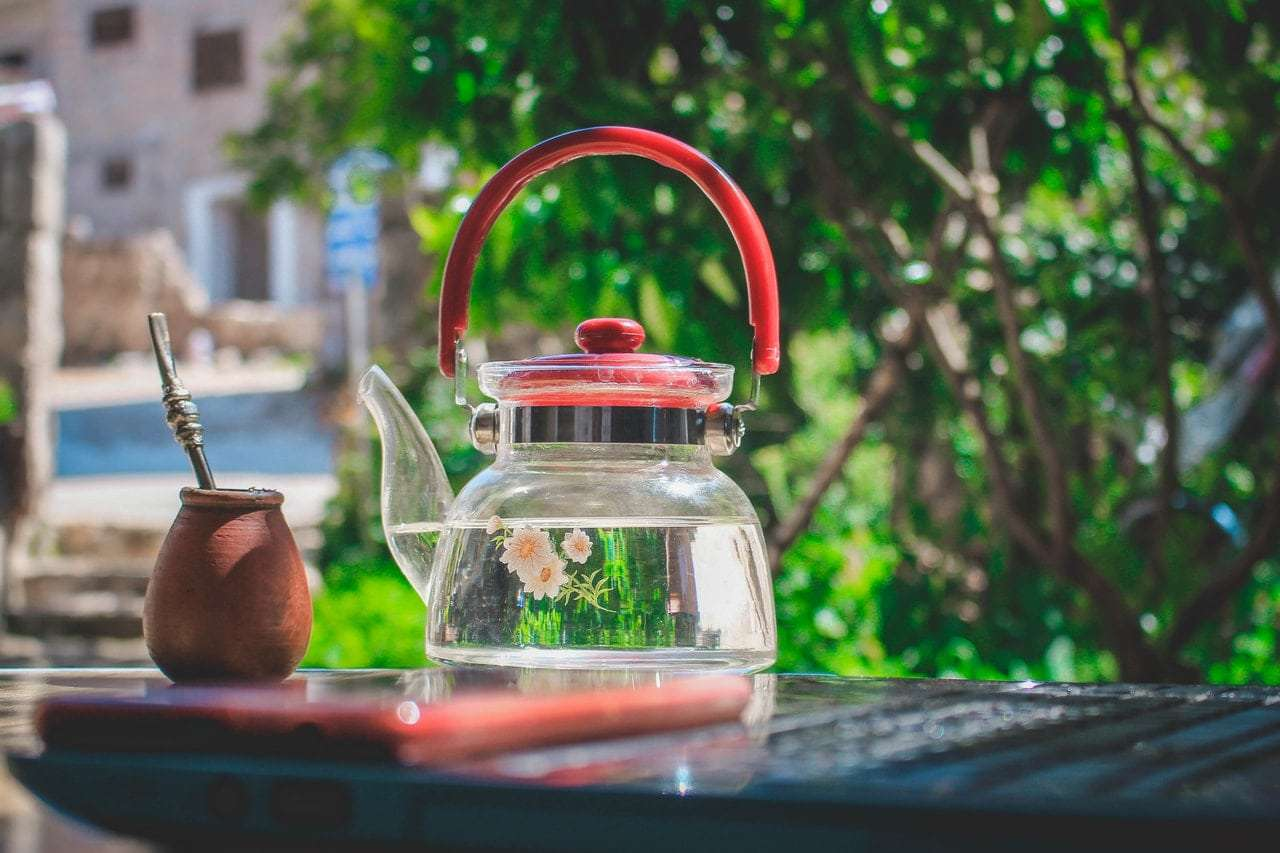 Photo of a clear glass teapot full of water with a garden behind