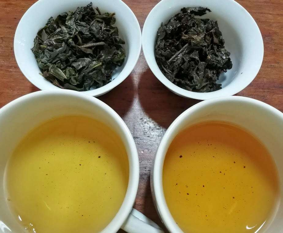 Photo of two gaiwan with damp aged oolong leaves, next to two cups of the tea made from them.