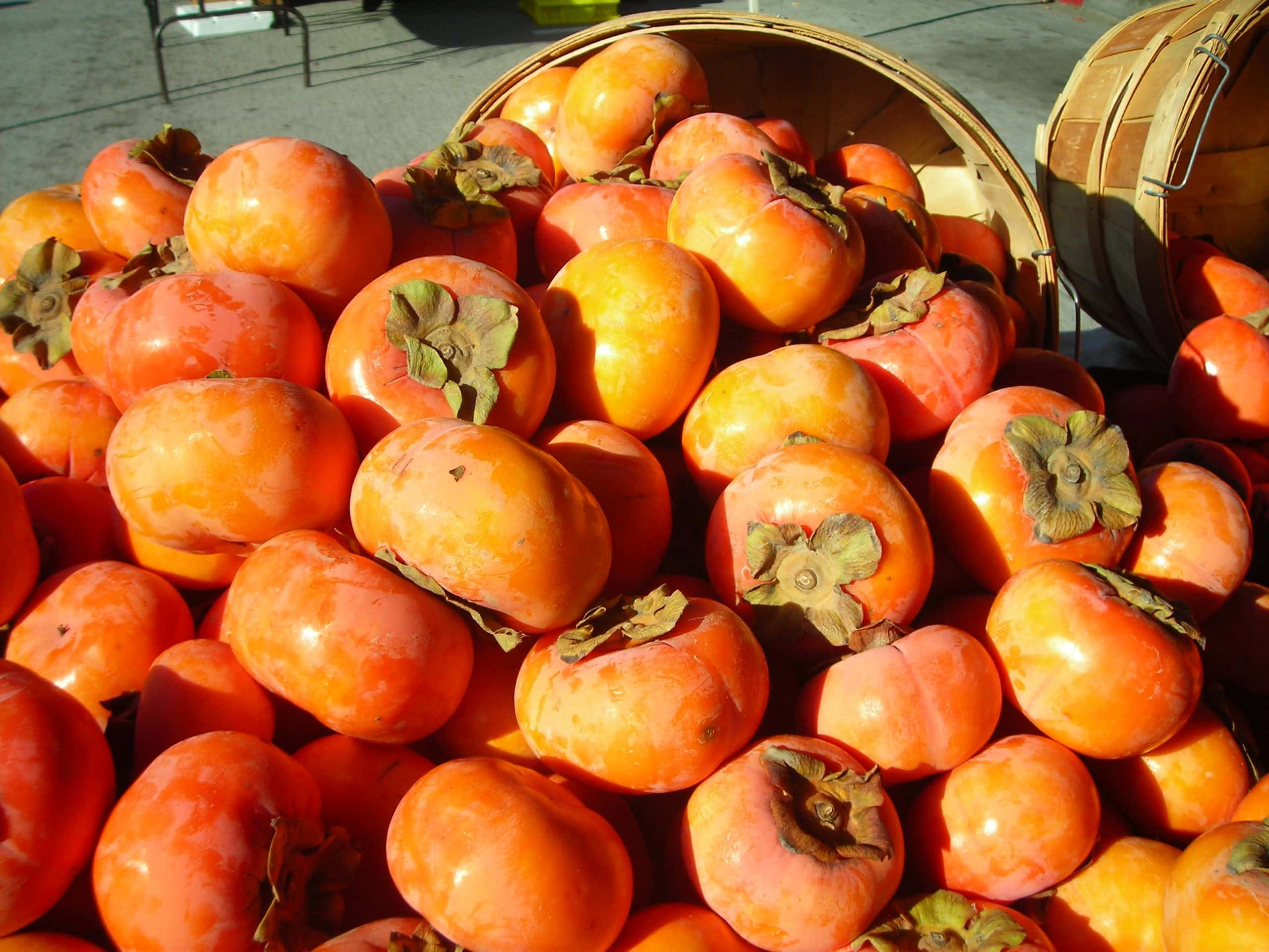 Fuyu and Lapsang - A photo of a pile of fuyu persimmons.