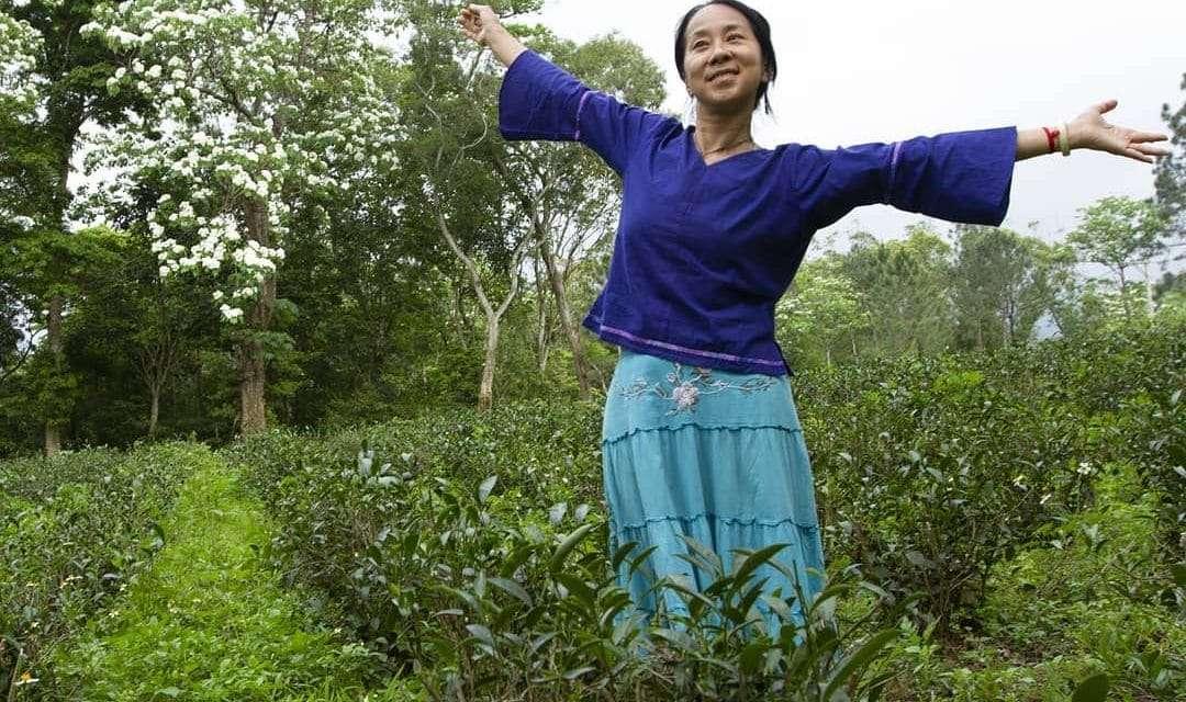 Tea Trends of 2021 – Scarcity
