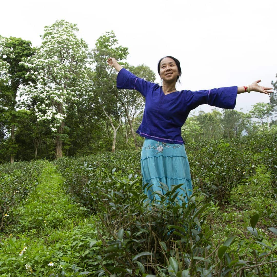 Tea Trends of 2021 - Scarcity - Photo of someone standing in a tea field with their arms spread