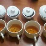 The Middle of the Tea Experience Curve – Part 2
