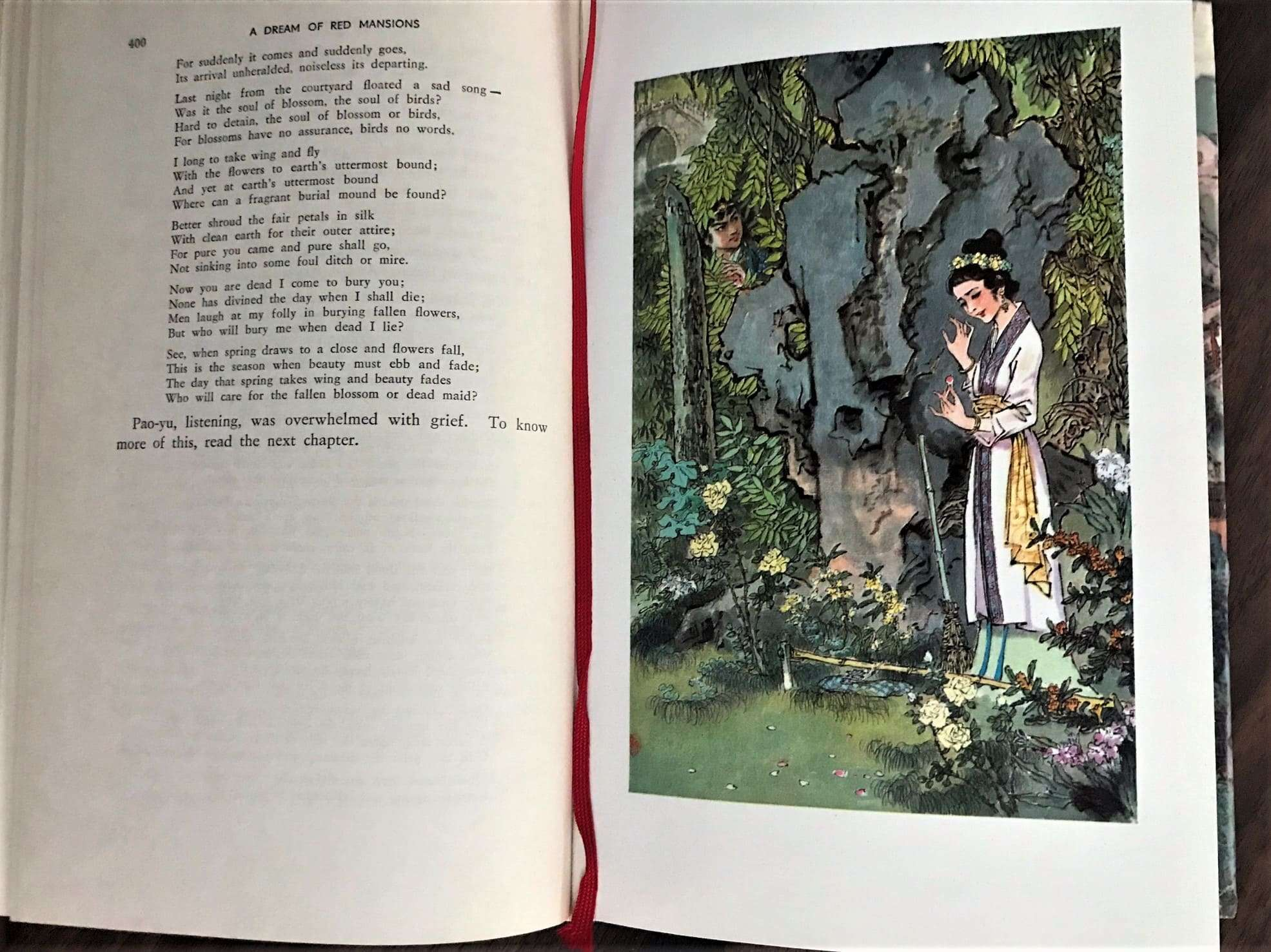 A Dream of Red Mansions - Photo of an illustration and passage from the book